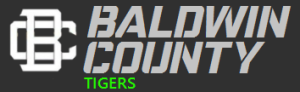 Baldwin County Tag